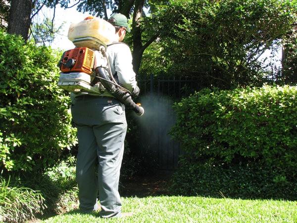 Costo-trattamento-anti-zanzare-giardino