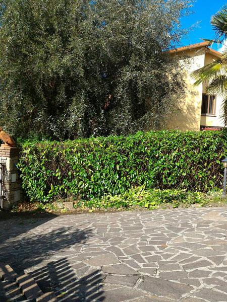 Giardiniere-per-manutenzione-prato-bologna