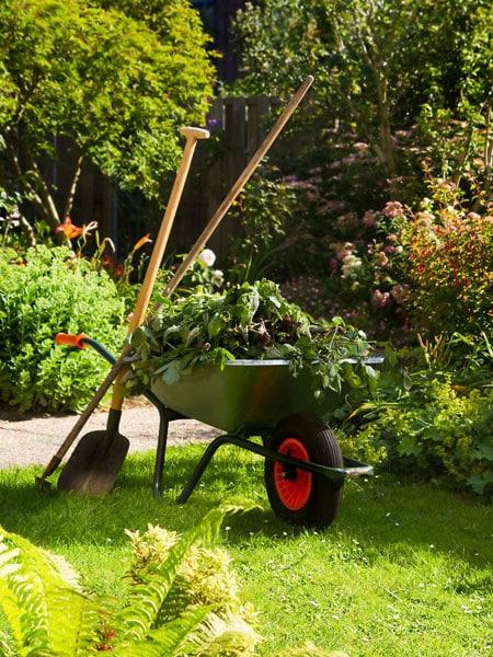 Impresa-giardinaggio-bologna