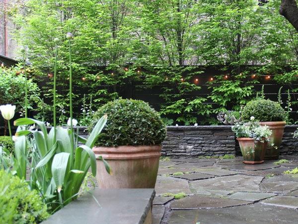 potatura-alberi-giardini-scolastici-casalecchio-di-reno